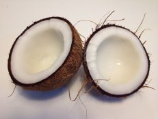 close-up-coconut-food-221074 (1)